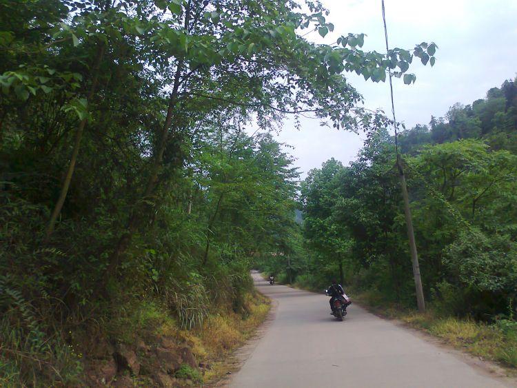 这是在木成往龙沱的路上,夏天这一路都很凉爽